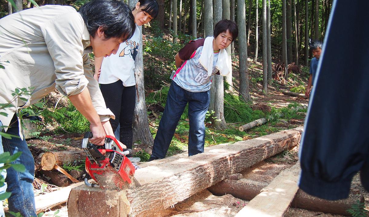 林業体験(伐採 / 製材)